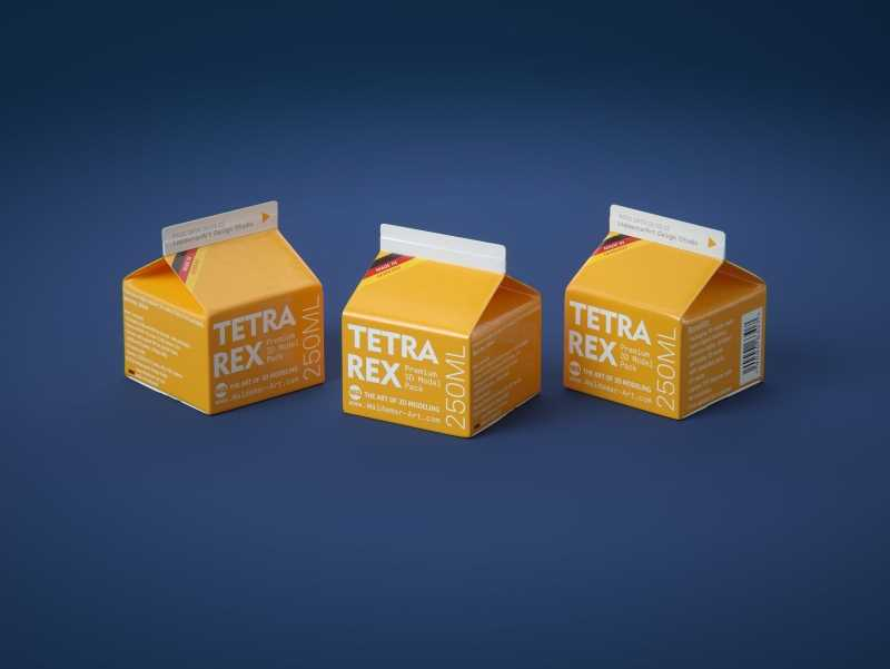 Tetra REX 250ml Professional carton packaging 3D model pak