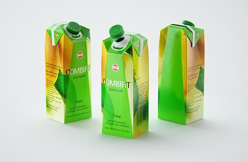 Carton Mockup of Tetra Pack Prisma 500ml Front View