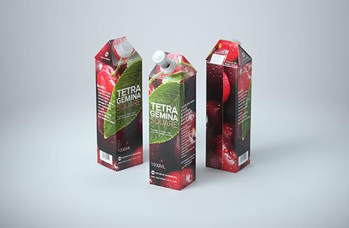 Premium Packaging 3d model pak of Tetra Pack Gemina Square 1000ml with StreamCap opening