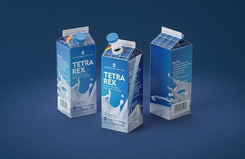 Tetra Pack Rex 2000ml carton package 3D model pak with TwistCap